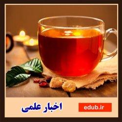 به بهانه روز جهانی چای- خواص و مضرات مصرف دومین نوشیدنی محبوب در جهان