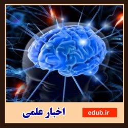توصیههایی برای داشتن مغز سالم