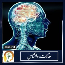 تا چه اندازه مغزتان را میشناسید؟